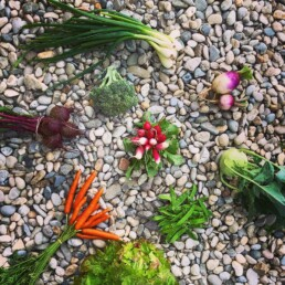 verschiedenstes Gemüse auf steinigem Untergrund